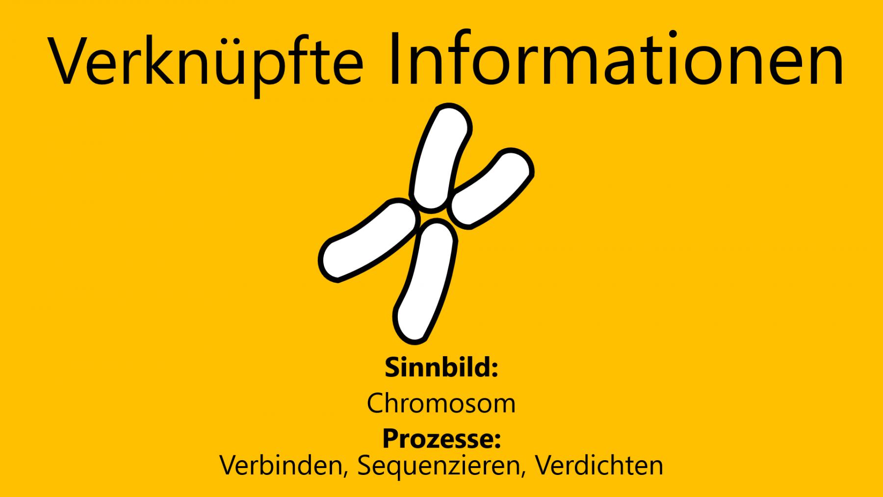 Daten-zu-Wissen-06